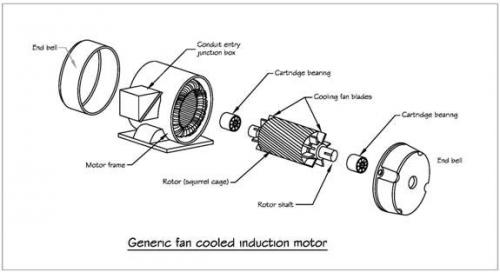 Squirrel Cage Motor Diagram Impremedia Net